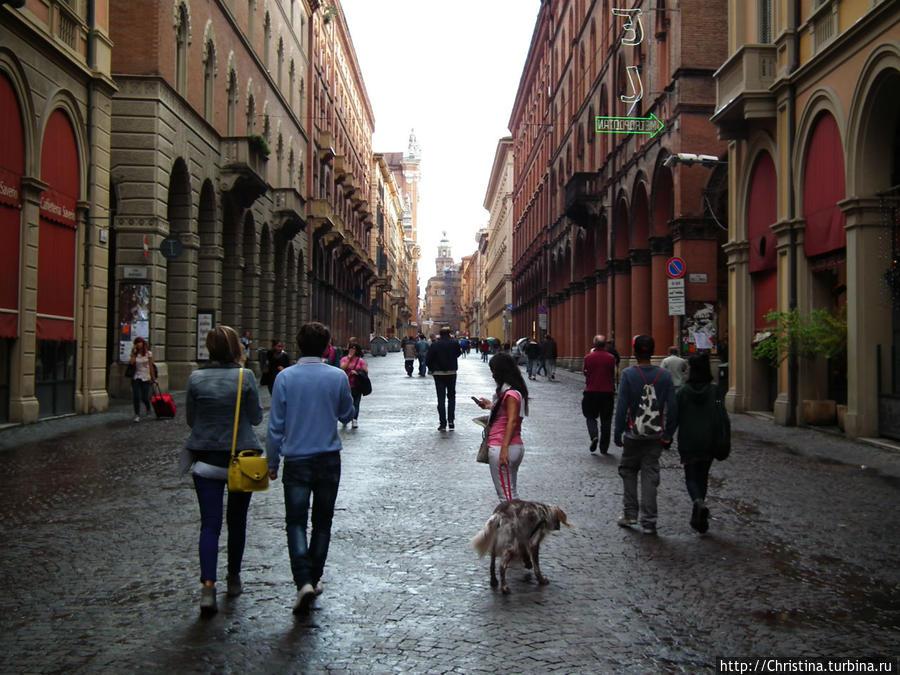 Сколько адвокатов и юристов, судей и прокуроров протоптали вдоль и поперек эти булыжные улочки Болоньи.