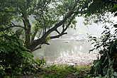 Туман   сильно   изменил   все  очертания   и   речка   стала   выглядеть   загадочной.