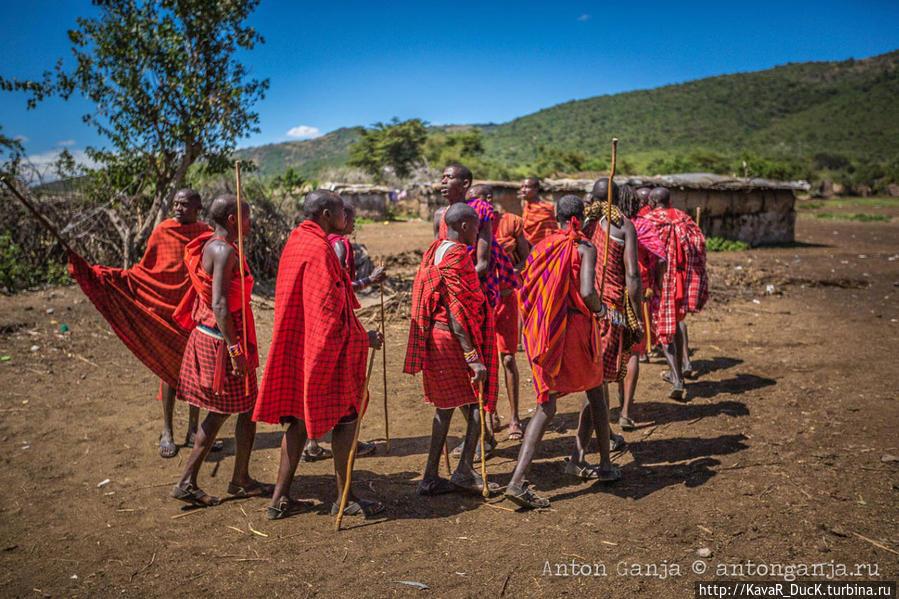 Национальный парк масаи мара