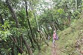 Трек на холм Луква