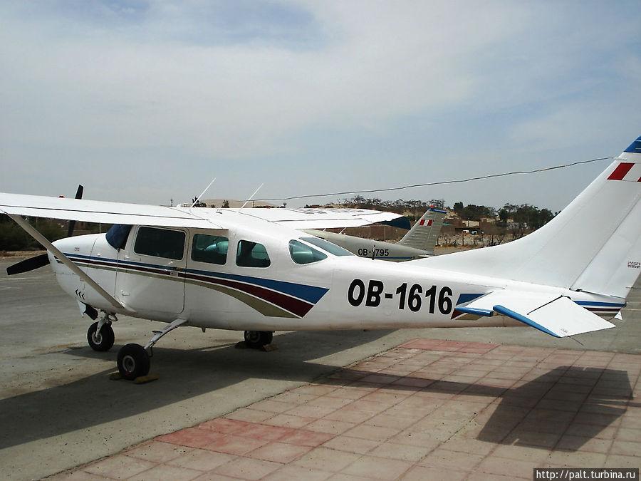 Наш самолетик с бортовым номером 1795 спрятался за белым собратом