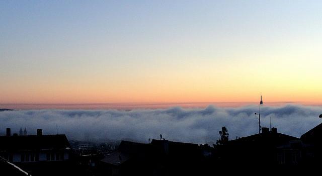 туман по утру (фото из окна)