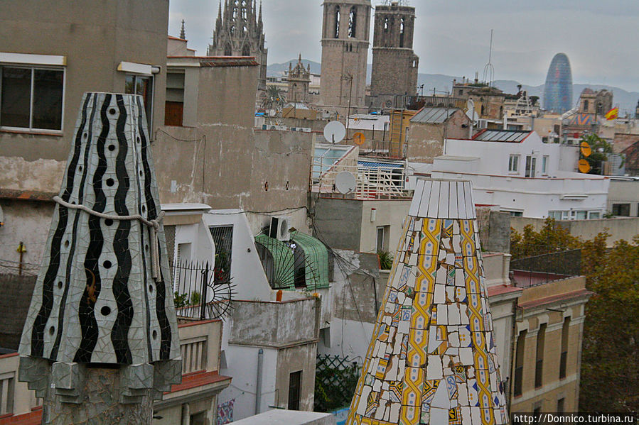 шишки большие и маленькие, по своему хаосу Барселона совсем не европейский город