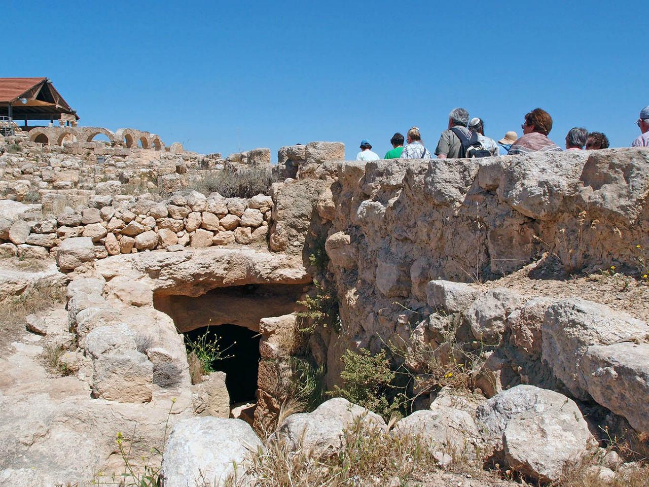 Ботаника, археология и зеленая черта Сусия, Палестина