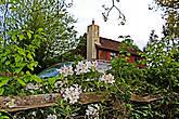 дом в цветущих азалиях