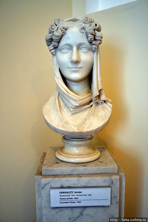Иштван Ференци. Графиня Viczay, 1824