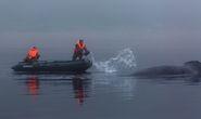 Фото: Андрей Каменев, шеф-фотографа журнала National Geographic Россия