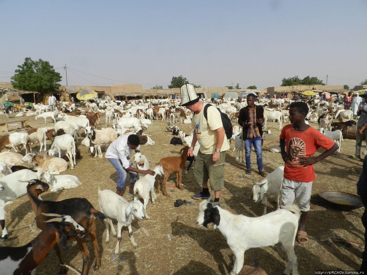 Нигер. Ч — 20. Агадес и его жители Агадес, Нигер
