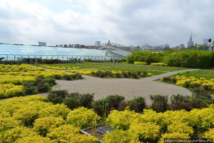 Золотой сад.