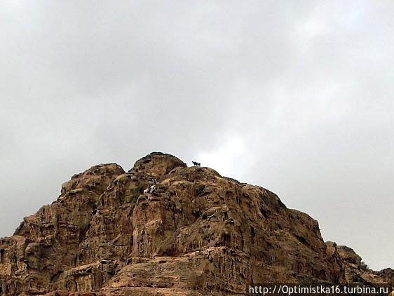 На вершине горы мы замети