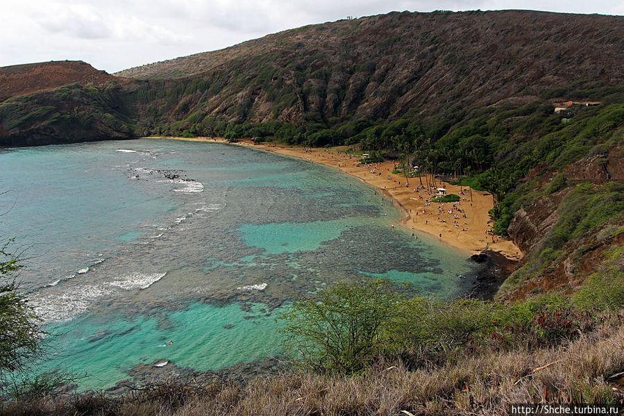 хороши видны рифы, зон для простого купания практически нет