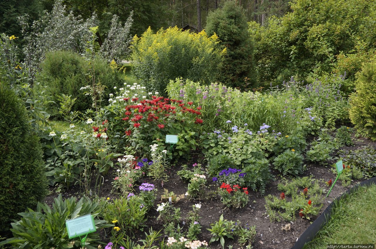 Сад  для  души Камлак, Россия