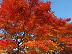 на стоянке у храма Санзенин, Киото