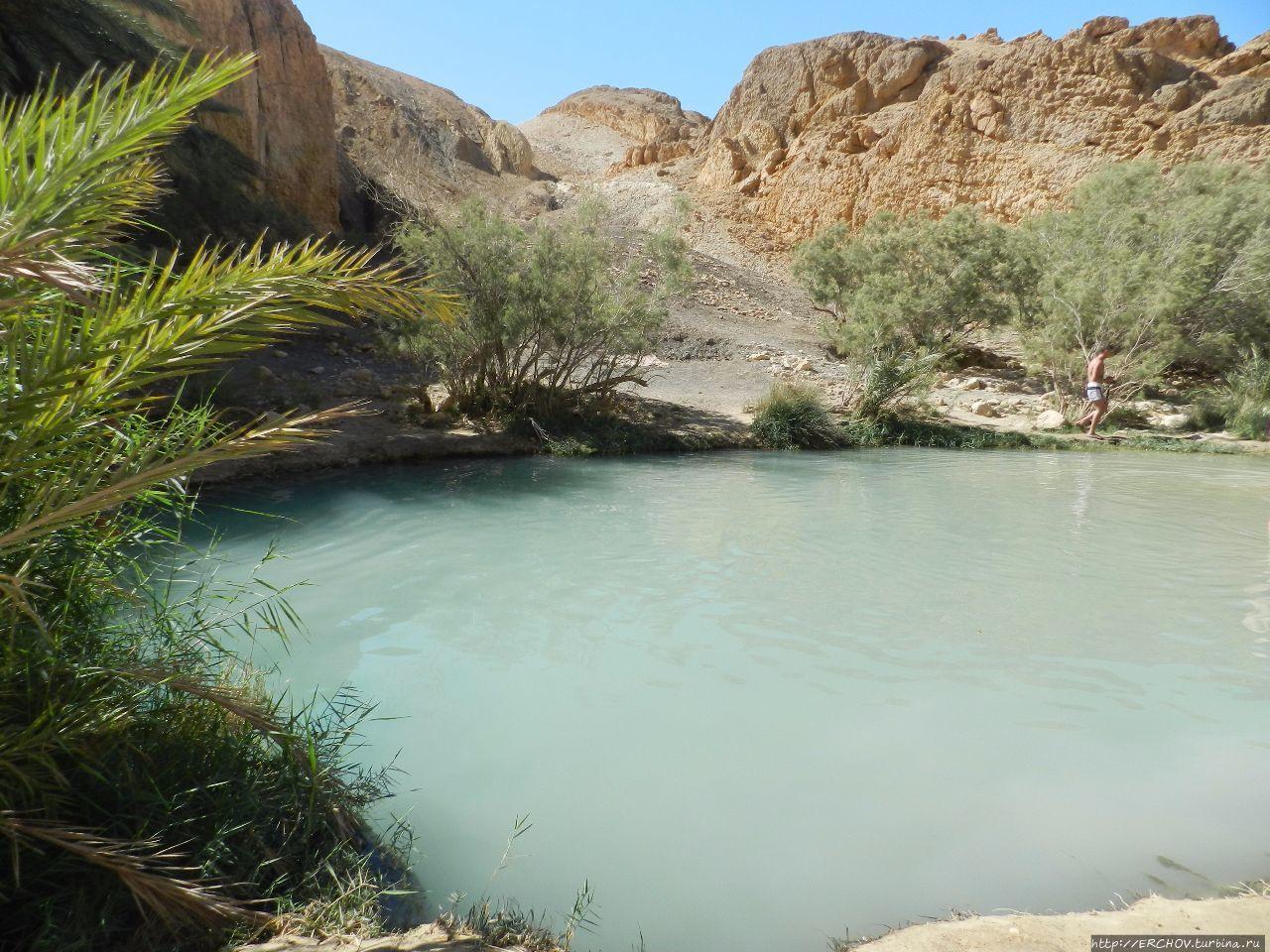 Экскурсия в Сахару. Ч — 7. Шебика — райский оазис Сахары