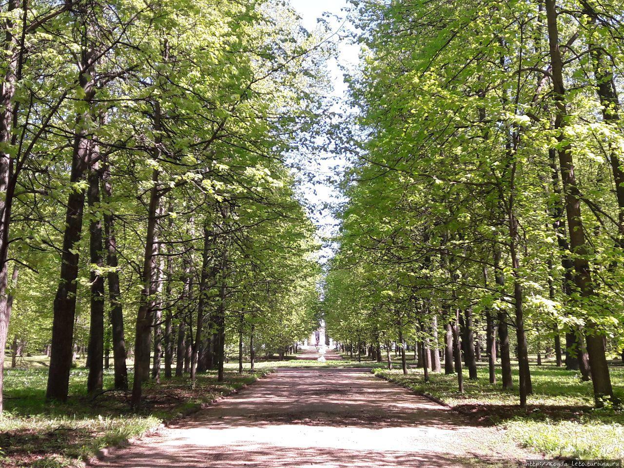 Усадьба Петровско-Разумовская. Москва, Россия