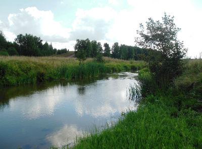 Вот такая  речка,  с  названием  Ройка,  бежит  за  селом.