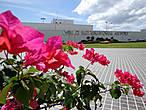 Международный аэропорт Давао считается современным, способным принимать современные аэробусы (длина взлетной полосы 3 километра)