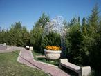 Территория ботанического сада.