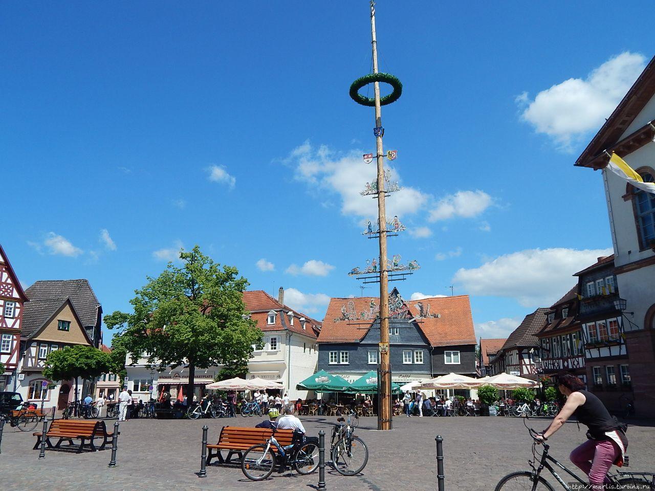 Foto ehrmann in seligenstadt 45