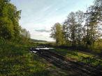 Вдоль  леса  тянулась  грунтовка  побитая  грязью