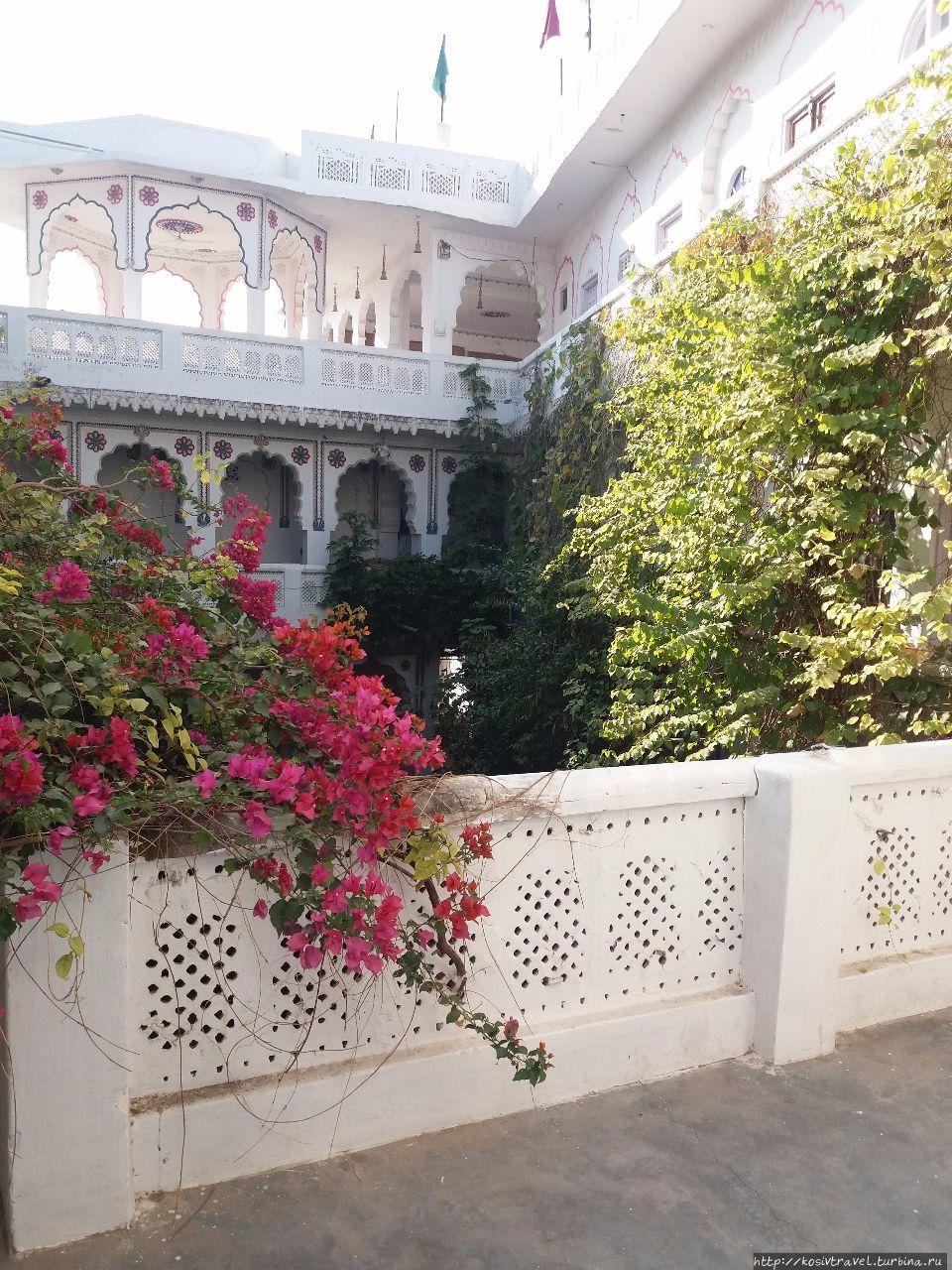 Саи Баба Хавели Гестхаус Пушкар, Индия