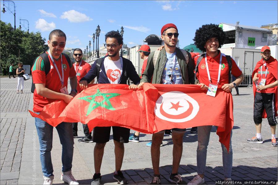 12. Флаги Марокко и Тунис
