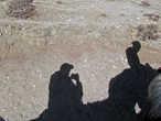 С практикой селфи я не сильно знаком, потому решил сфотографировать собственную тень:))