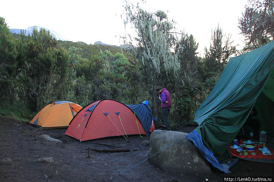 наши 2 палатки и палатка для приема пищи