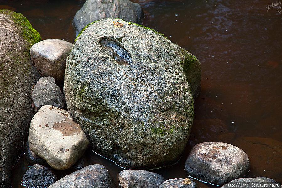 Камень-следовик. Сверху явно виден один след и еще один сбоку.