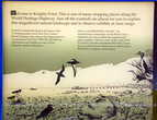 Информация на точкt Рыцарей —  Knights Point на берегу Тасманского моря