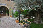 Основу декорации составляло очень старое и благородное оливковое дерево, дополненное многочисленными аксессуарами