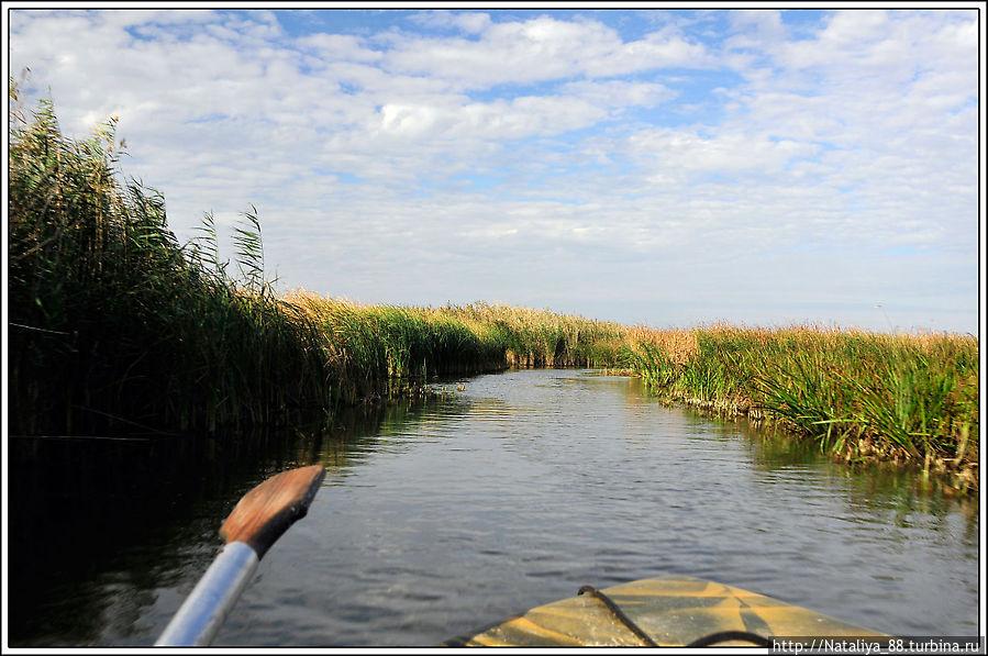 краснодарский край приморско-ахтарск рыбалка