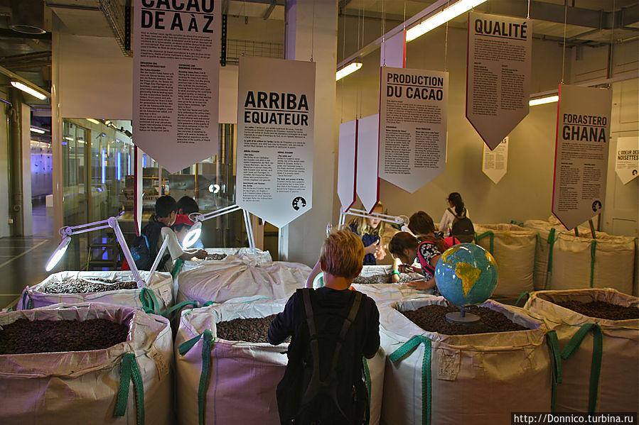 После того как были насыщены знаниями уши, очередь на носом — вот в этой комнате можно понюхать бобы какао из разных регионов мира