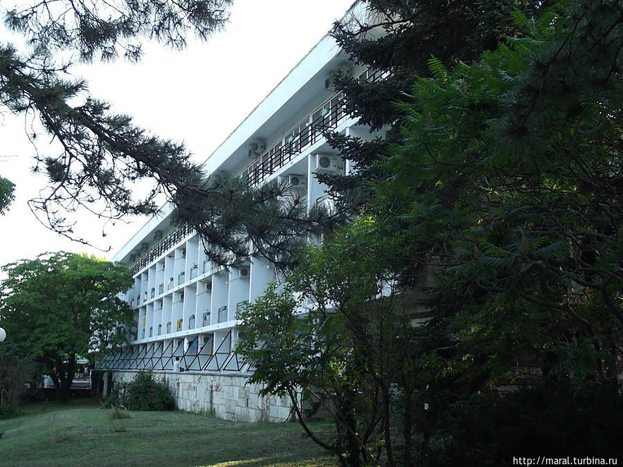 Четырехэтажный гостиничный корпус расположен в глубине чудесного парка
