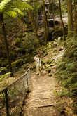 Тропы Голубых гор несложные и иногда оборудованы перилами