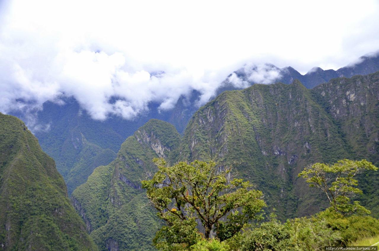Мечта моей жизни Мачу-Пикчу, Перу