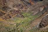 Марсианская зелень. По дороге с марсианского Кызыл-Чина на лунный Чаган-Узун.