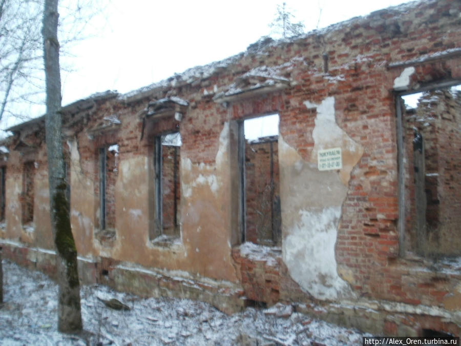 С грустью приходится констатировать, что во времена совхоза «Красная Балтика» здесь существовала хоть какая-то власть.