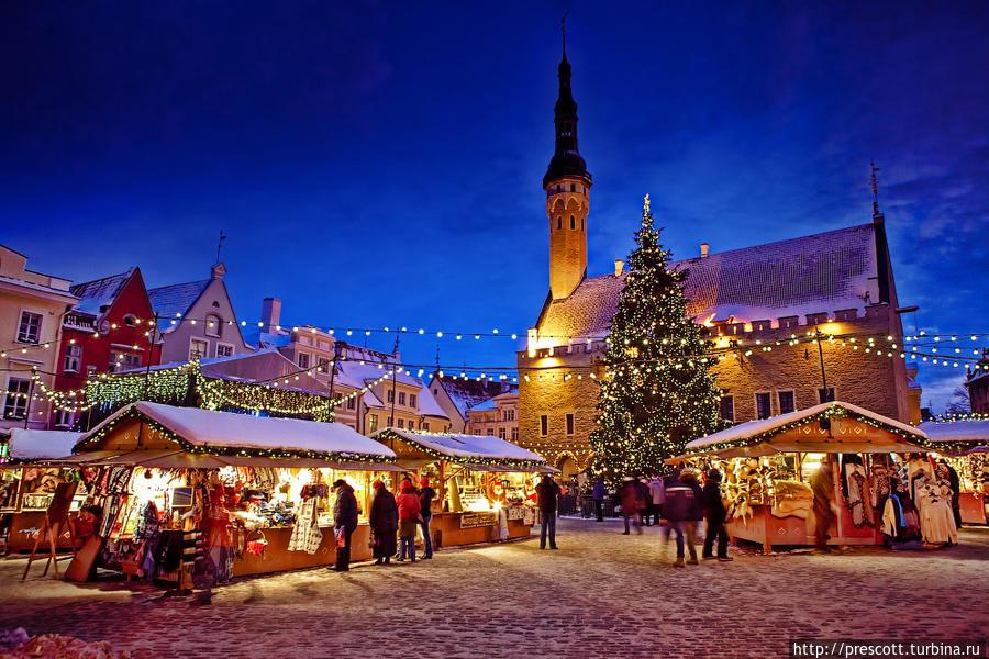 рождество в таллине 2016 если