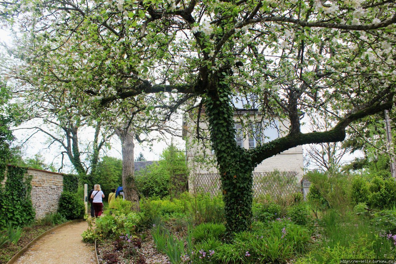 Сад у мастерской Ренуара