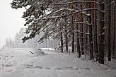 На Горно-Алтайск осталось после всех выполненных дел всего два дня и гидра покуражилась на славу. Ливневый снег — такого понятия я прежде не слышала, да и не видела подобного явления. Знаете, Петербург отдыхает.