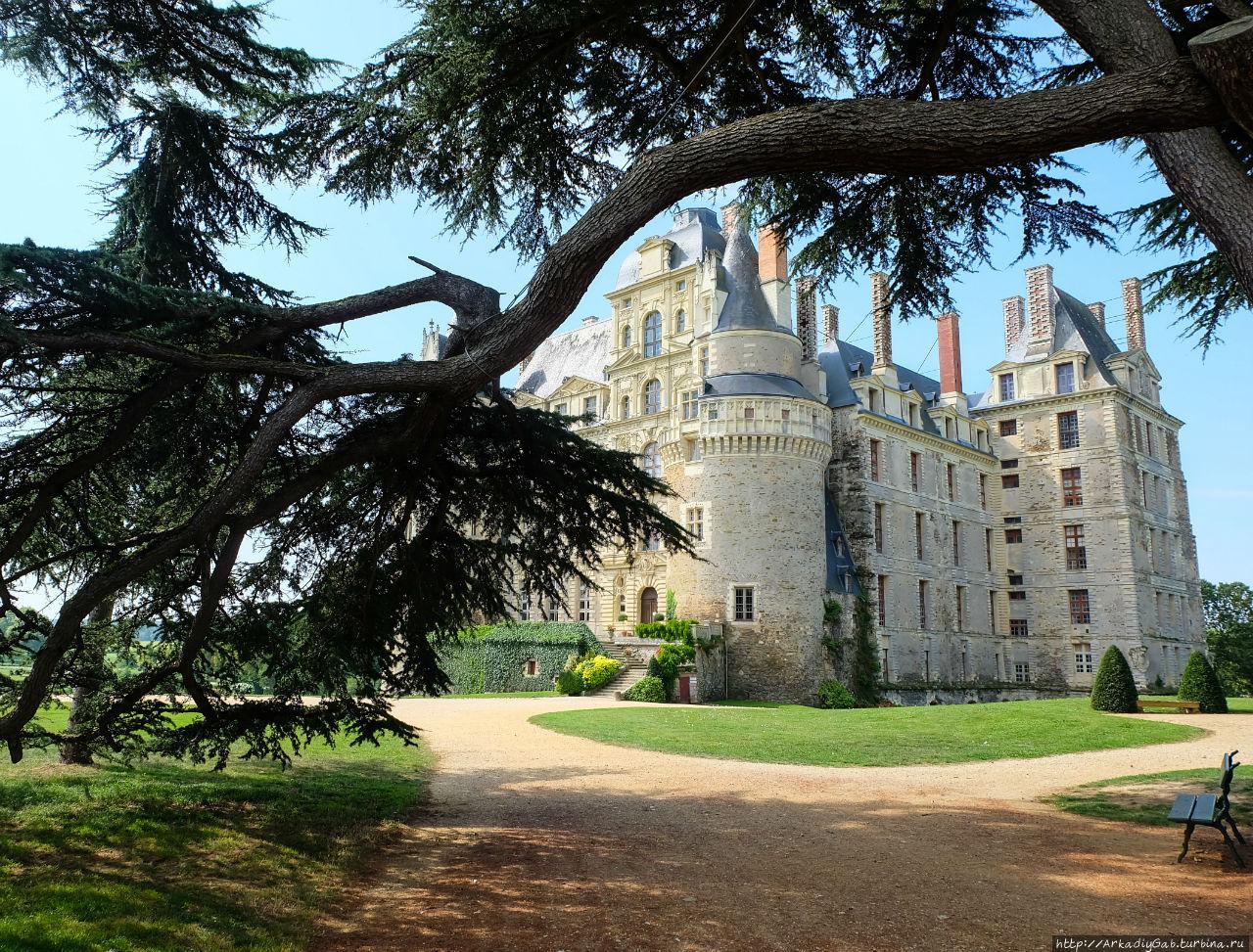 Замок Бриссак. В брызгах крови и шампанского Бриссак-Кенсе, Франция