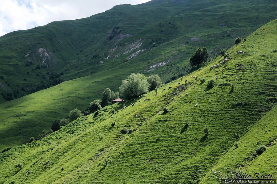 Деревенька на противоположной стороне долины