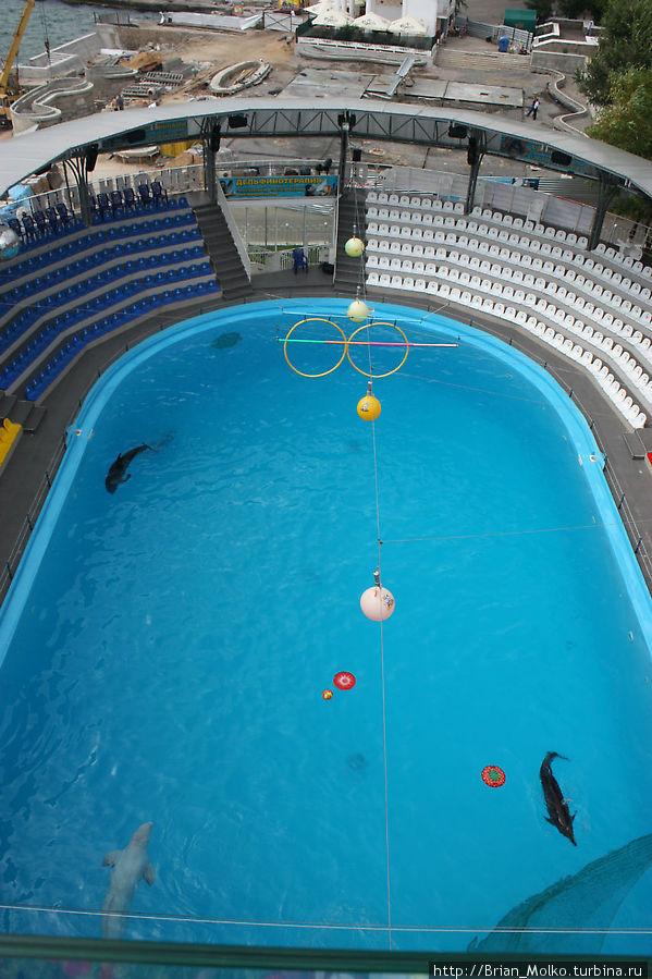 Вид на бассейн с террасы ресторана