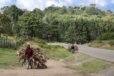 Девчата тащат солому, или как там оно правильно называется. Пейзаж вот вполне себе среднерусский, а это Южная Эфиопия.