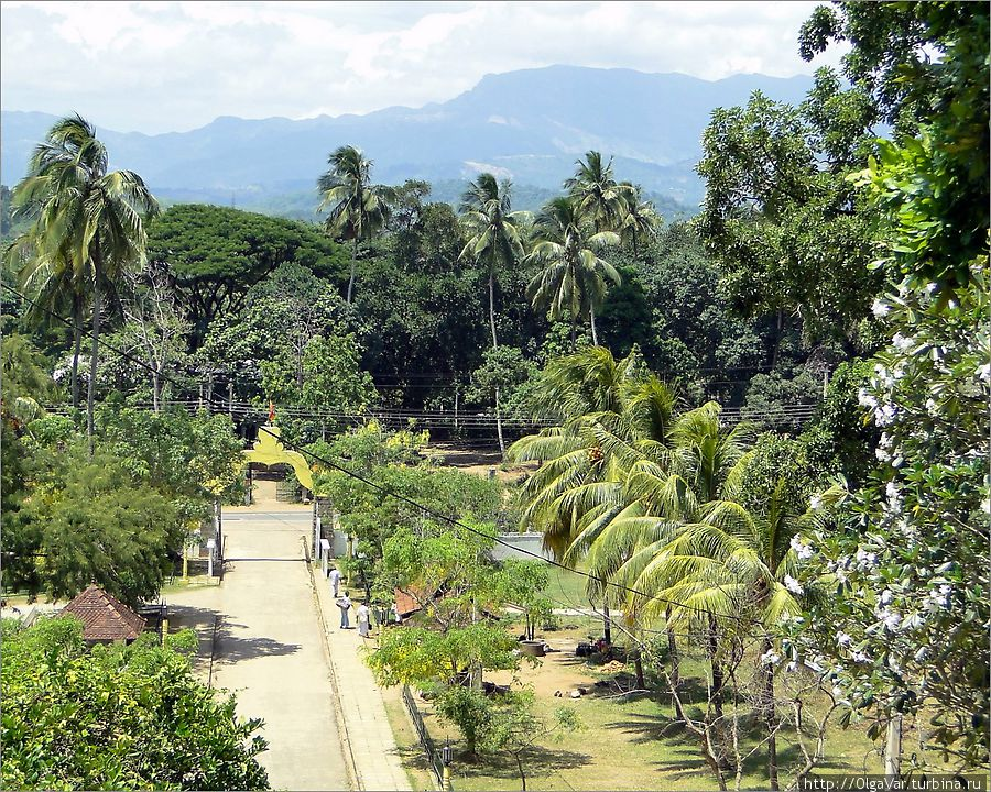 matale sri lanka Matale tourism: tripadvisor has 3,092 reviews of matale hotels, attractions, and restaurants making it your best matale resource matale tourism: best of matale asia sri lanka.