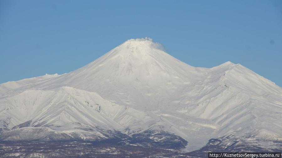 Авачинский вулкан с Мишенной сопки