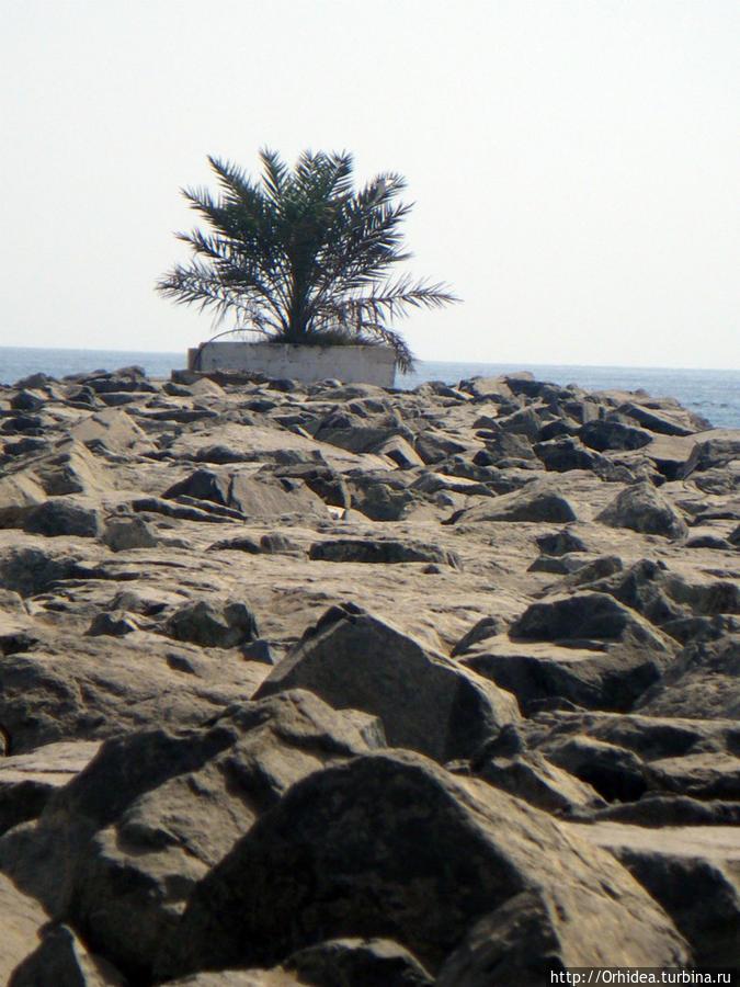 каменный вал-ограничитель
