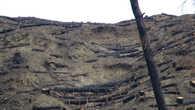 Результаты пожаров в Древней Олимпия