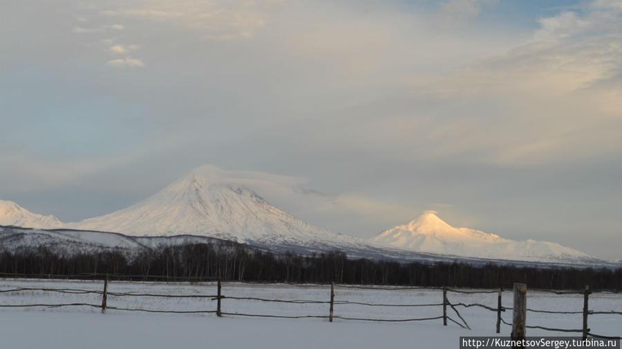 Авачинский вулкан от Кайнырана